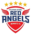 Hyundai Steel Red Angels WFC